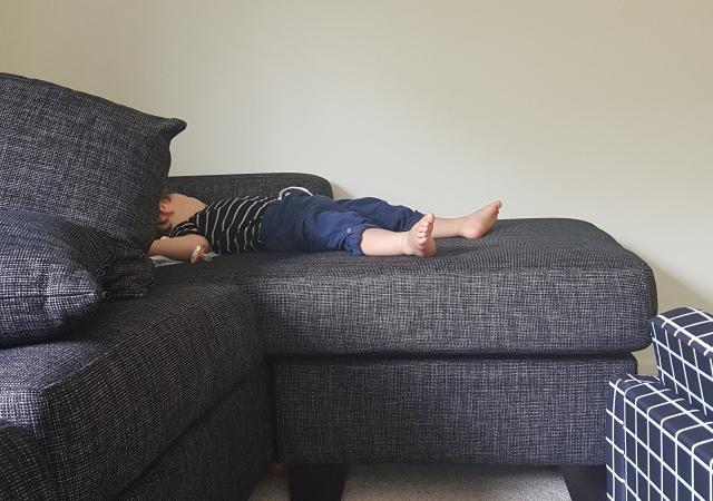 紐西蘭育兒-紐西蘭生活